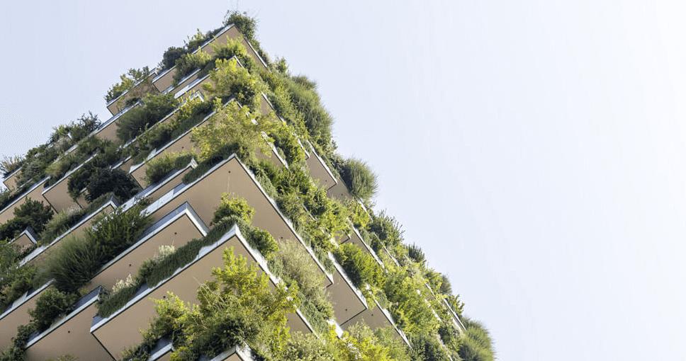 Casas ecológicas del 2019