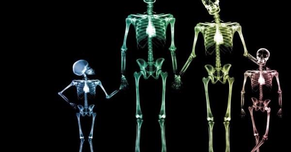 Esqueleto de una familia