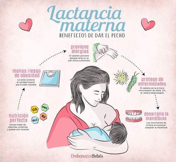 Tips de lactancia materna