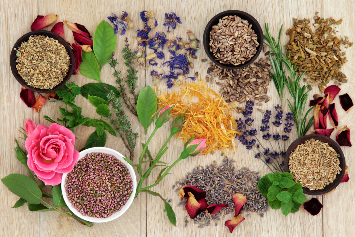 Tips para los remedios herbolarios