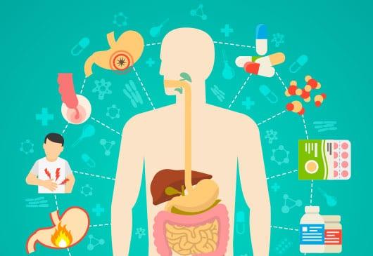 la cetosis y el cuerpo