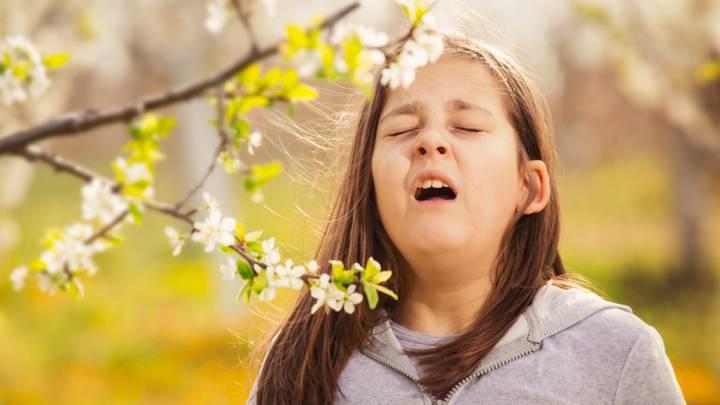que es la alergia